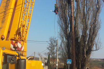 Rizikové kácení stromů pomocí techniky